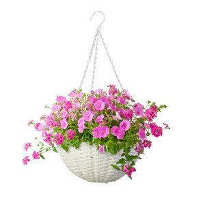 Panacea Resin Wicker Hanging Basket White 1ea/14 in