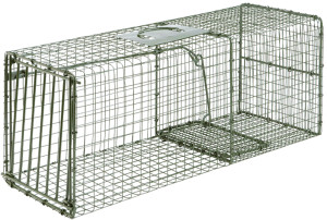 Duke Heavy Duty Large Cage Trap for Raccoon Cat & Armadillo Green 1ea/28 In X 12 In X 12 in