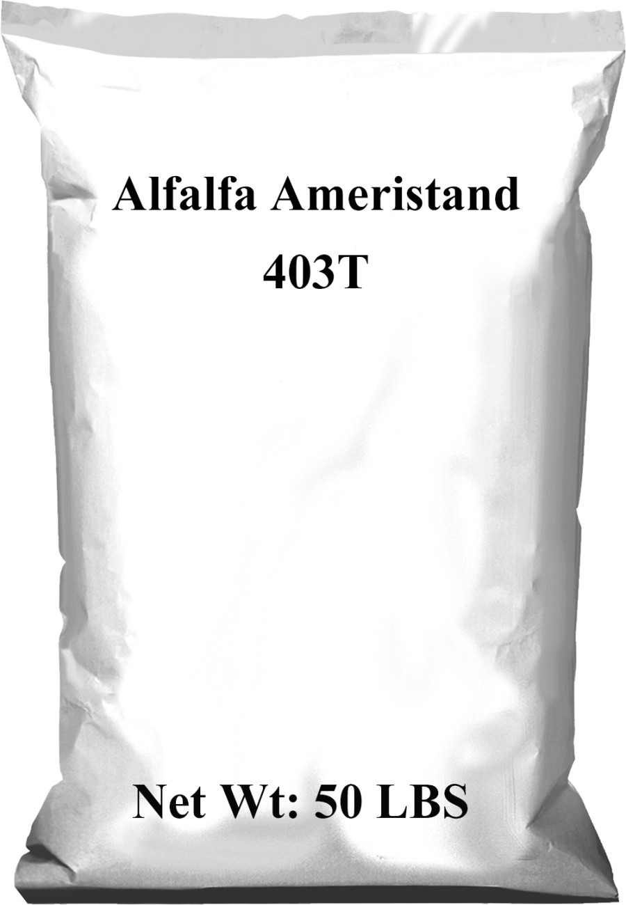 Pennington Alfalfa Ameristand 403T 1ea/50 lb