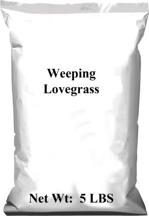Pennington Weeping Lovegrass 1ea/5 lb