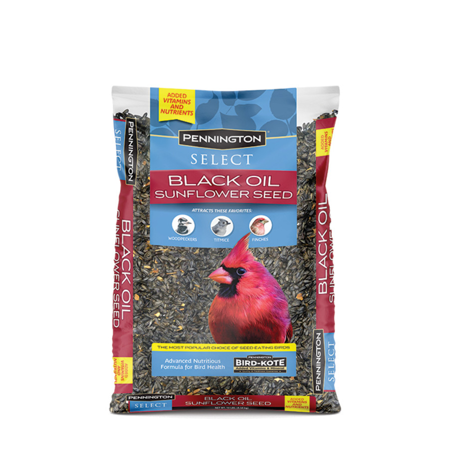 Pennington Classic Black Oil Sunflower Seed Bird Food 3ea/10 lb