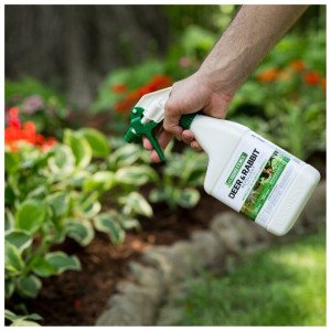 Liquid Fence Deer & Rabbit Repellent Ready To Use 6ea/32 fl oz