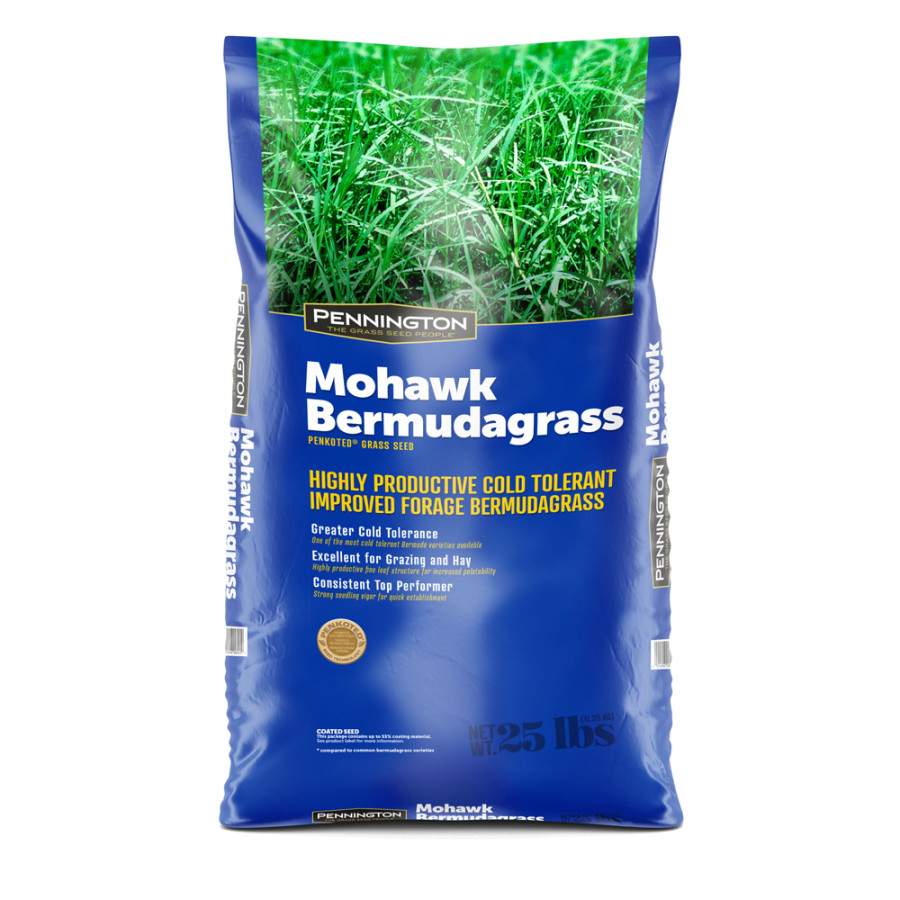 Pennington Mohawk Bermudagrass Hulled Penkoted With Cold Tolerence 1ea/25 lb