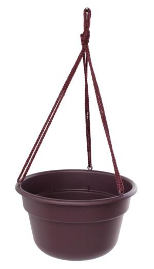 Bloem Dura Cotta Hanging Basket Planter Exotica 12ea/12 in