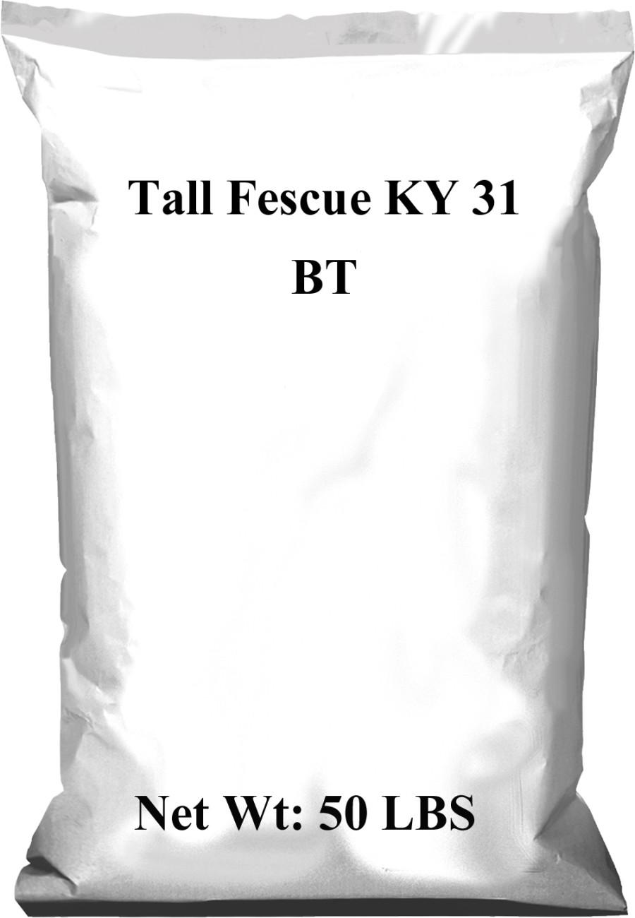 Pennington Tall Fescue Grass Seed KY 31 BT 1ea/50 lb