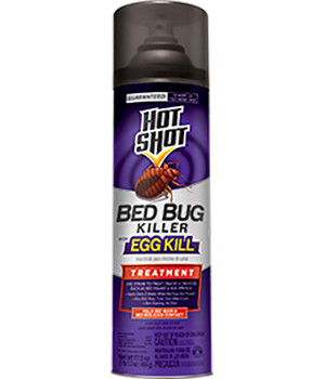 Hot Shot Bed Bug Killer with Egg Kill 12ea/17.5 oz