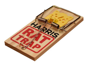 Harris Wooden Rat Trap Pre-Baited 24ea/11.75 In X 12.75 In X 5 in