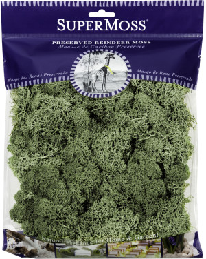 Supermoss Reindeer Moss Preserved Moss Moss Green 10ea/4 oz