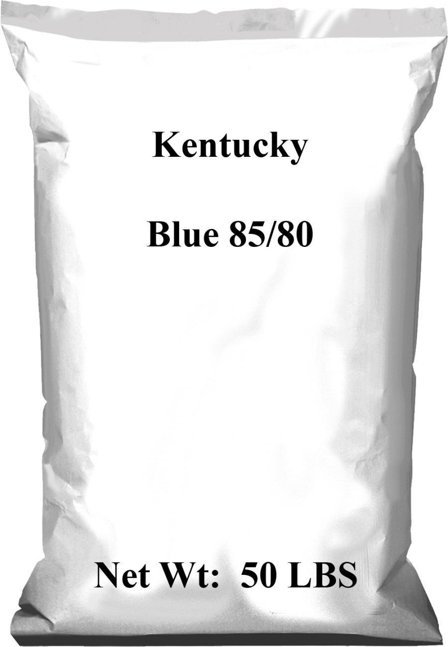 Pennington Kentucky Blue 85/80 1ea/50 lb