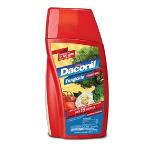 Daconil Fungicide Concentrate 6ea/16 oz