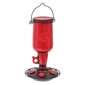 Classic Brands More Birds® Jug Hummingbird Feeder Jug Red 4ea/23 oz