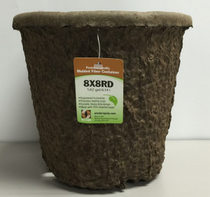 Western Pulp Molded Fiber Round Nursery Container Green 24ea/8Inx8In 1.62 gal