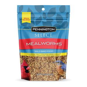 Mealworm Pouch Wild Bird 4ea/17.6 oz