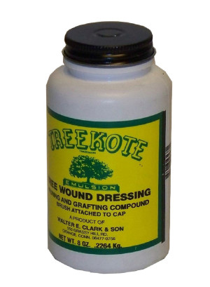 Treekote Tree Wound Dressing Brush Top 12ea/8 fl oz
