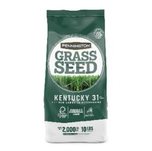 Pennington Kentucky 31 Tall Fescue Penkoted Grass Seed 4ea/10 lb