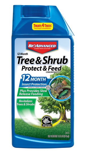 BioAdvanced 12 Month Tree & Shrub Protect Feed Concentrate 2-1-1 8ea/32 oz
