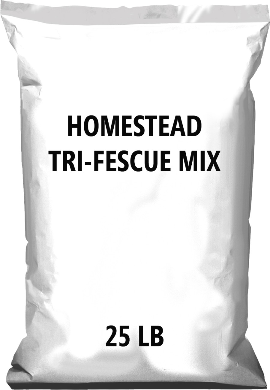 Pennington Homestead Tri-Fescue mix 1ea/25 lb