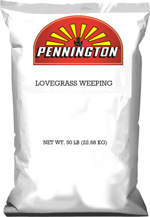 Pennington Weeping Lovegrass 1ea/50 lb