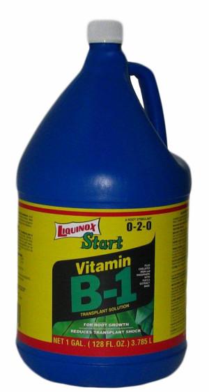 Liquinox Start Vitamin B-1 Transplant Solution 0-2-0 4ea/1 gal