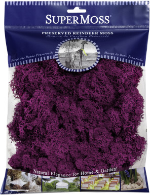 Supermoss Reindeer Moss Preserved Moss Fuchsia 10ea/4 oz