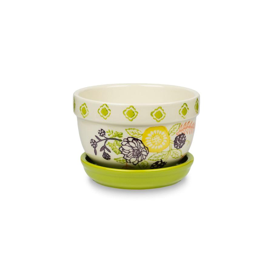 Pennington Floral Belly Pot Mimosa 6ea/5 in