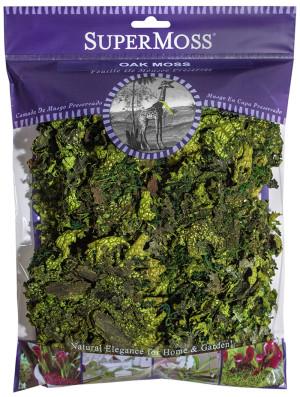 Supermoss Oak Moss Preserved Fresh Green 10ea/4 oz