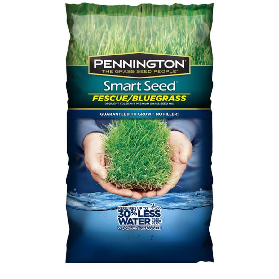 Pennington Smart Seed Fescue/Blue Grass Seed Mix 8ea/3 lb