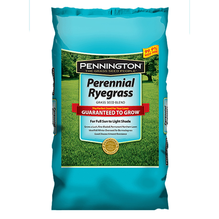 Pennington Perennial Ryegrass Grass Seed Blend 1ea/25 lb