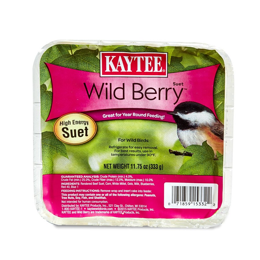 Kaytee Wild Berry High Energy Mini Suet 12ea/11.75 oz