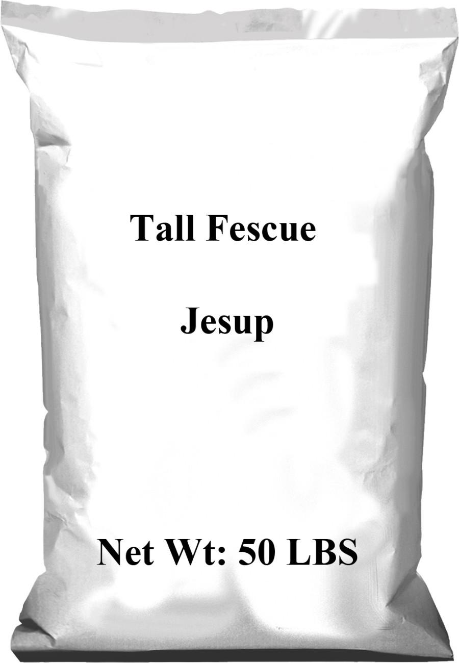 Pennington Tall Fescue Jesup 1ea/50 lb