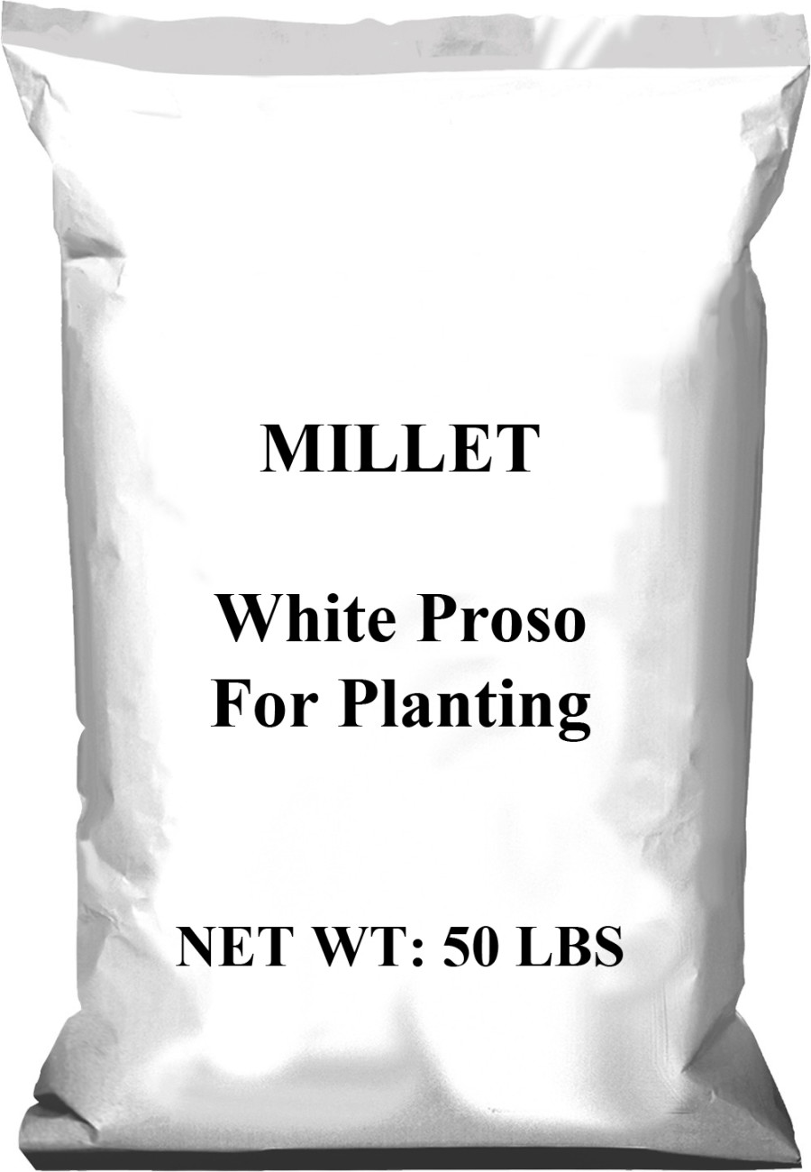 Pennington Millet White Proso For Planting 1ea/50 lb