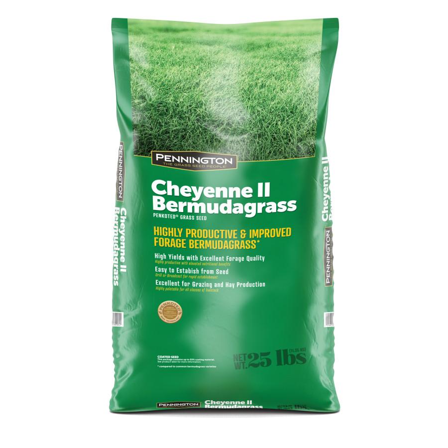Pennington Cheyenne II Bermudagrass Penkoted Grass Seed Hulled 1ea/25 lb