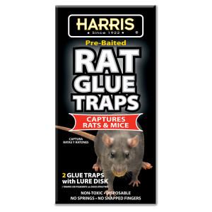 Harris Rat Glue Traps Rat & Mouse Pre-Baited 24ea/2 pk