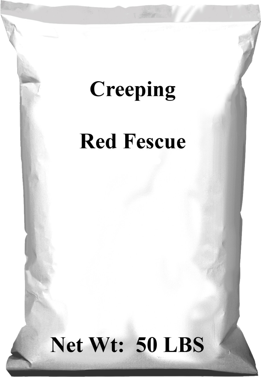 Pennington Creeping Fescue Red 1ea/50 lb