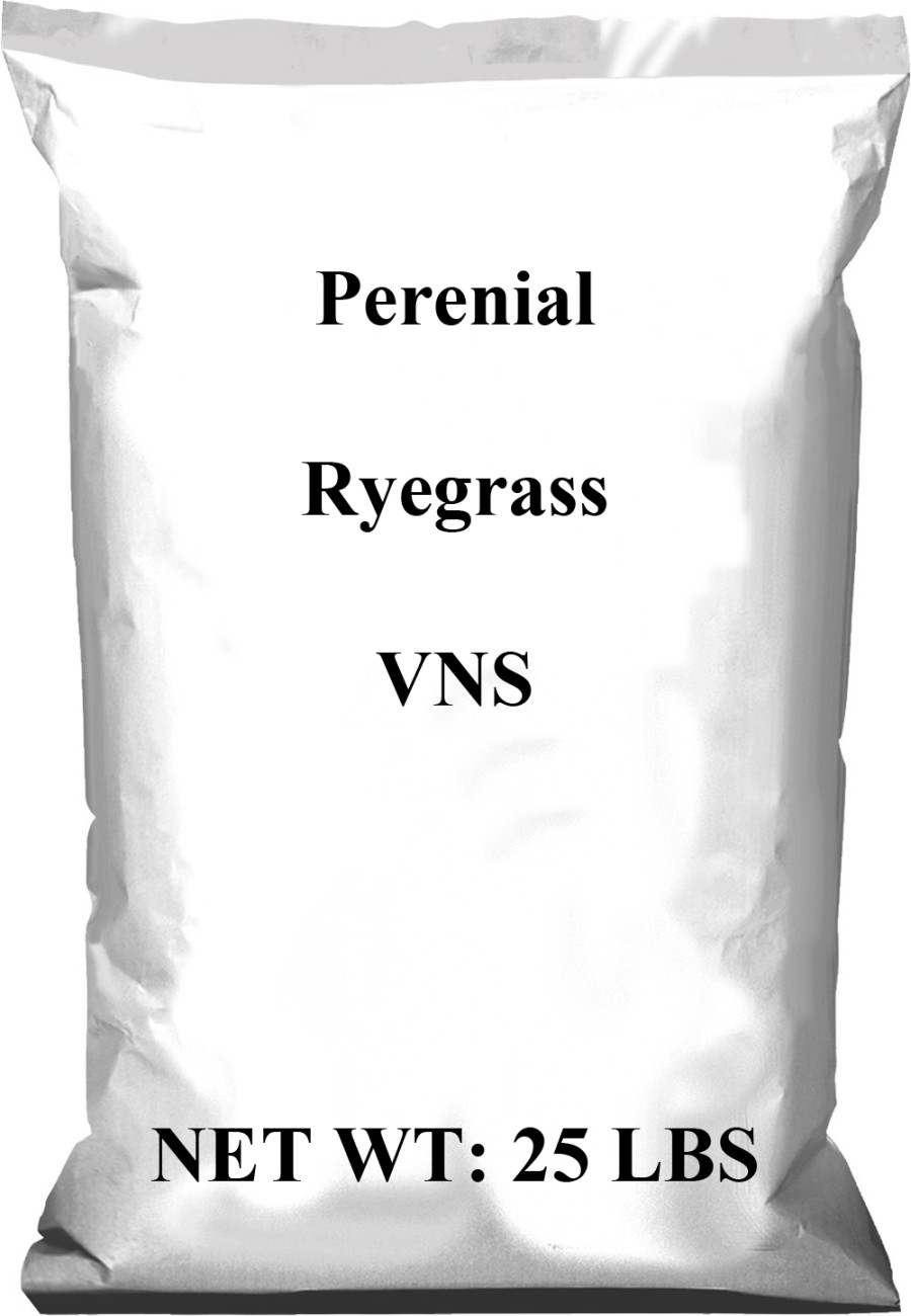 Pennington Perennial Rye VNS (Variety Not Stated) 1ea/25 lb