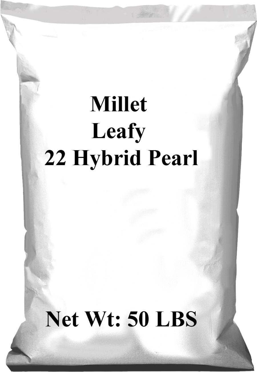Pennington Millet Leafy 22 Hybrid Pearl 1ea/50 lb