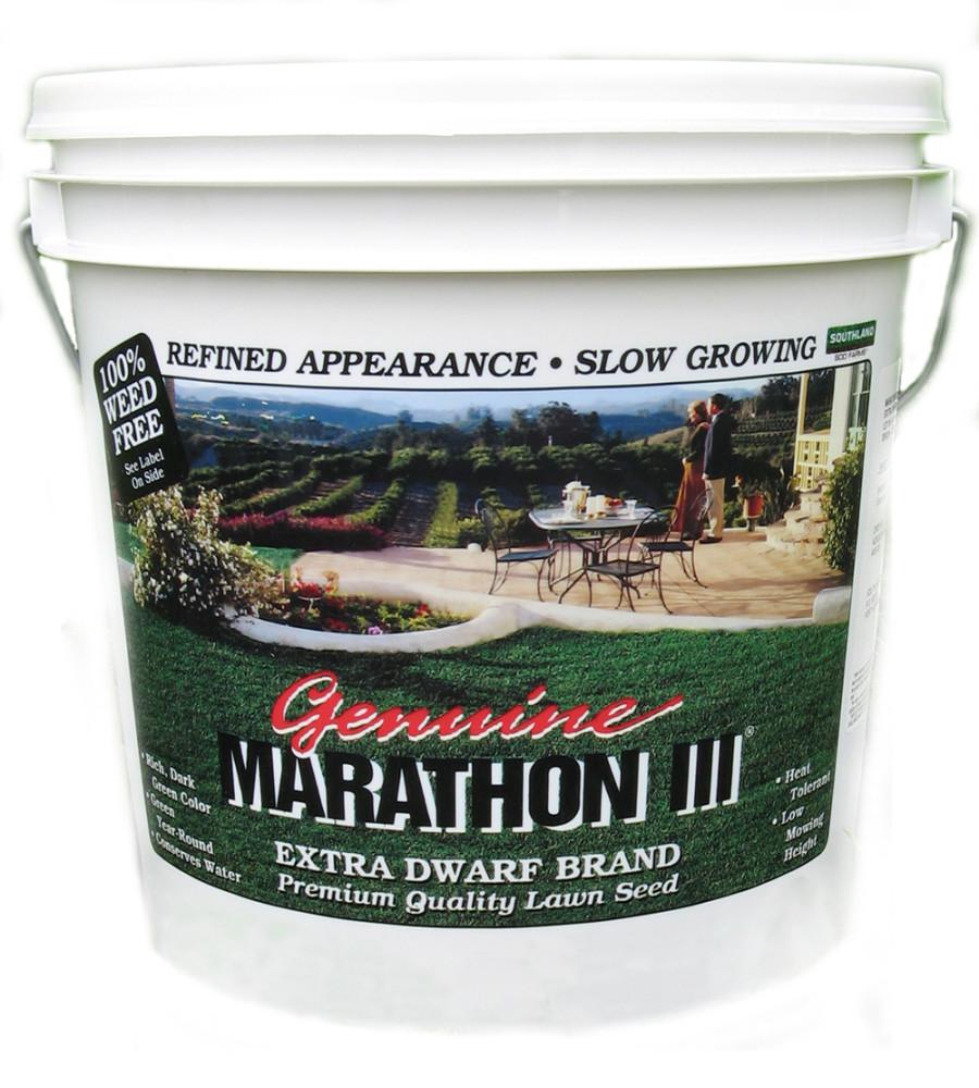 Marathon III Lawn Grass Seed Fine Leaf