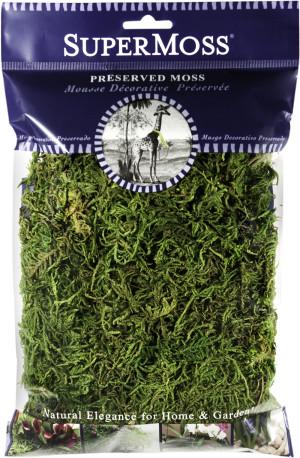 Supermoss Forest Moss Preserved Fresh Green 12ea/2 oz