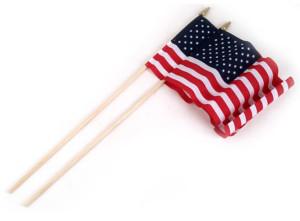 Flag Zone American Hand Flag Economy (No Sew) 12ea/2Pk 8Inx12 in