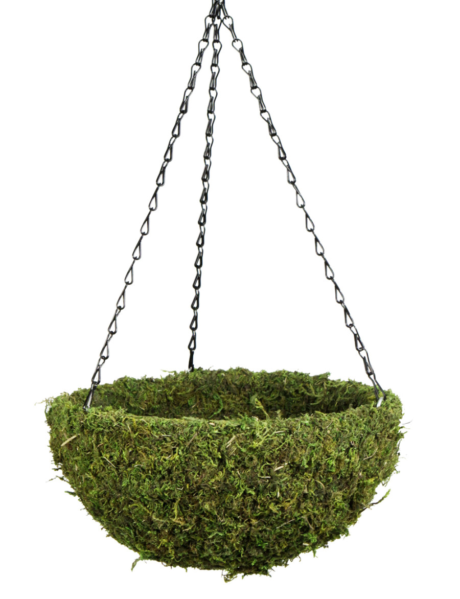 Supermoss Natural Moss Hanging Basket Round Preserved