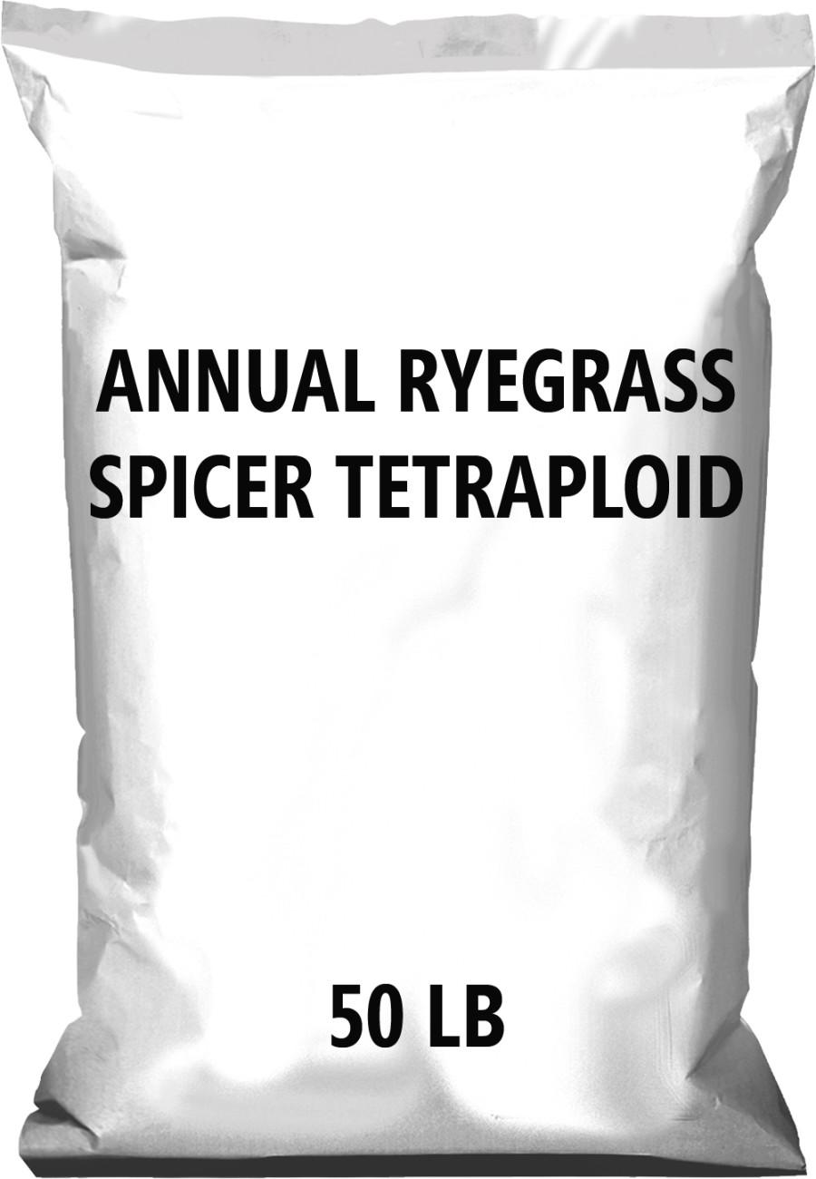 Pennington Annual Ryegrass Spicer Tetraploid 1ea/50 lb