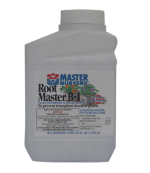 Master Nursery Root Master B1 Plus Hormone Concentrate 12ea/16 fl oz