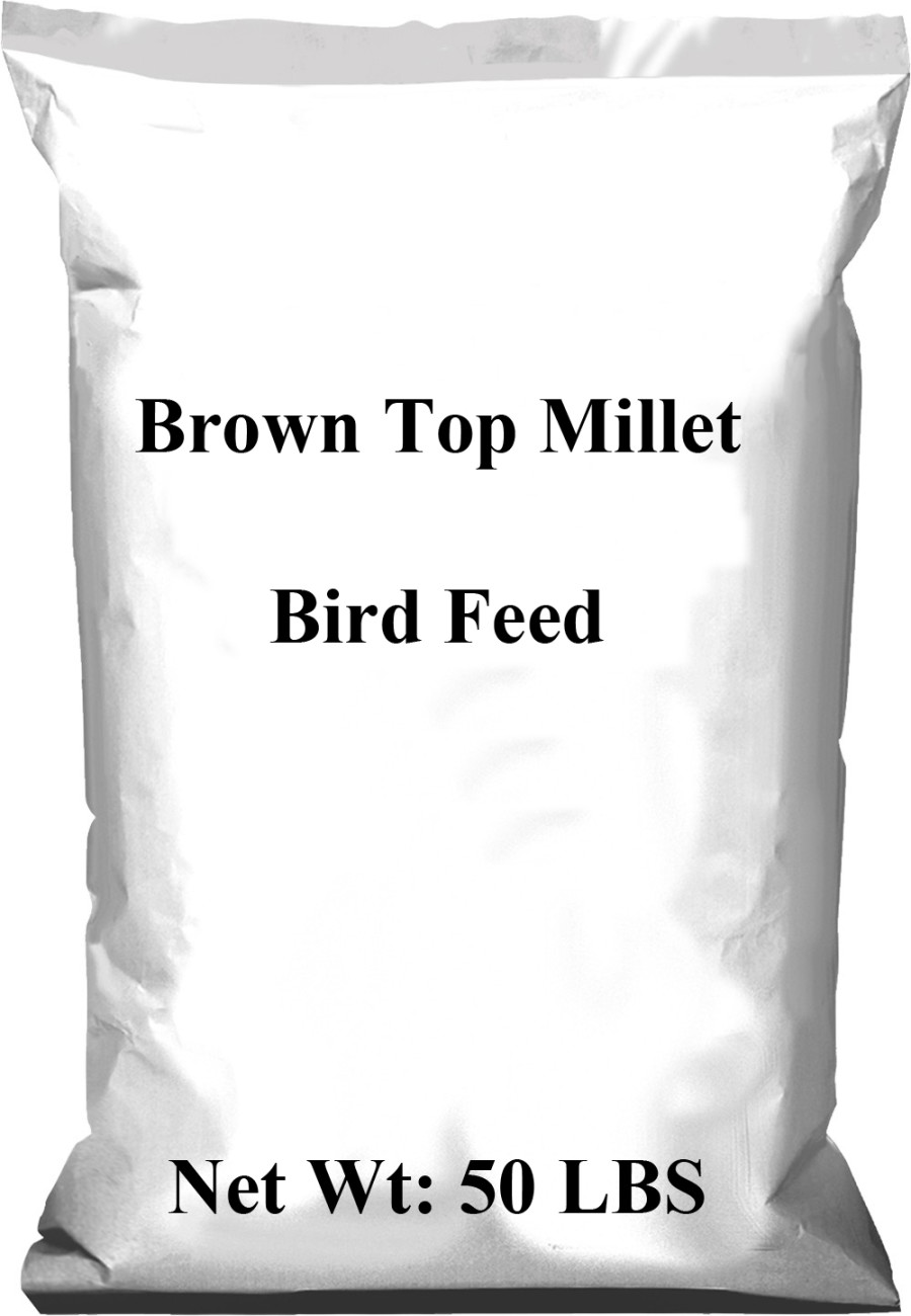 Pennington Brown Top Millet Bird Feed 1ea/50 lb