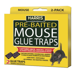 Harris Mouse Glue Traps Pre-Baited 24ea/2 pk