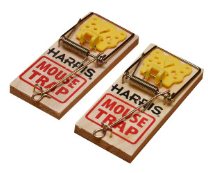Harris Wooden Mouse Trap Pre-Baited 36ea/2 pk