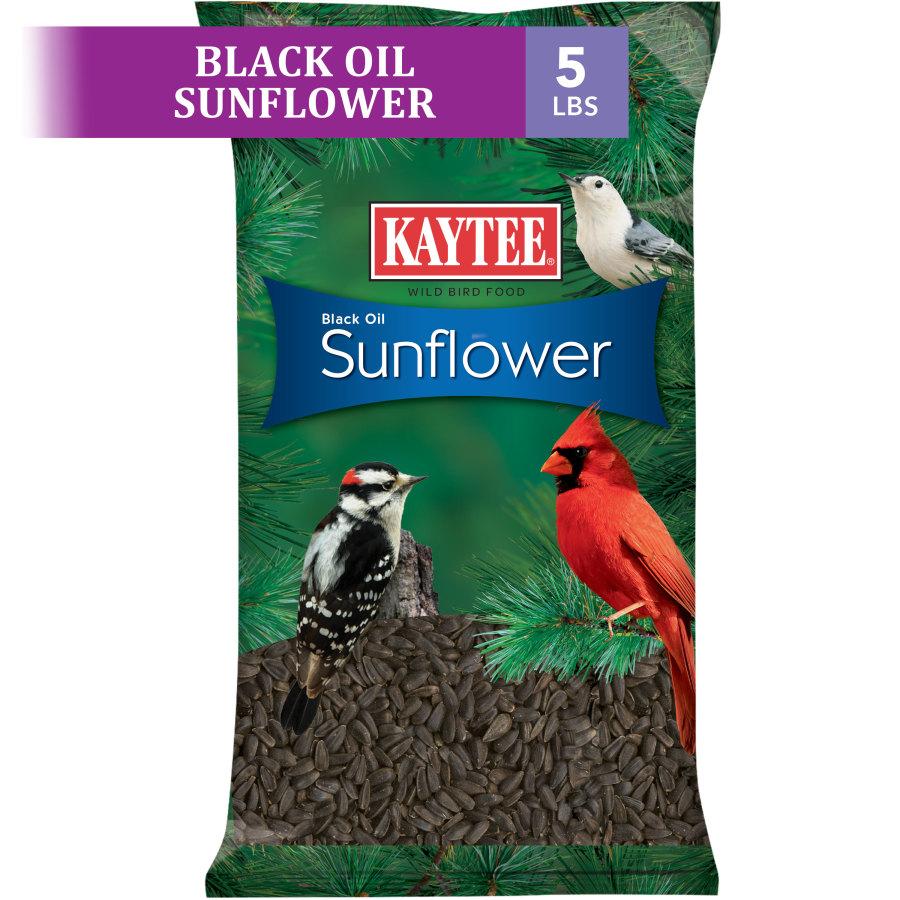 Kaytee Black Oil Sunflower Food 6ea/5 lb
