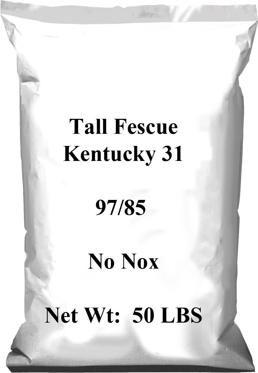 Pennington Tall Fescue Kentucky 31 97/85 No Noxious Weed Seed 1ea/50 lb
