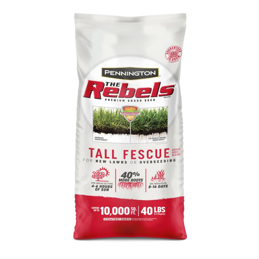 Pennington The Rebels Tall Fescue Grass Seed Mix 1ea/40 lb