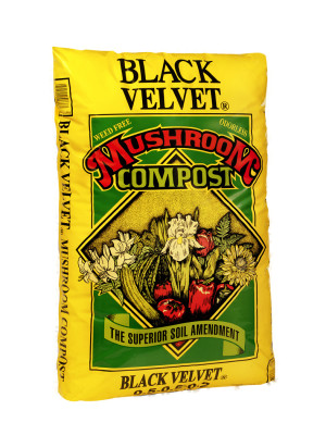 Black Kow Black Velvet Mushroom Compost Soil Amendment 1ea/40 lb