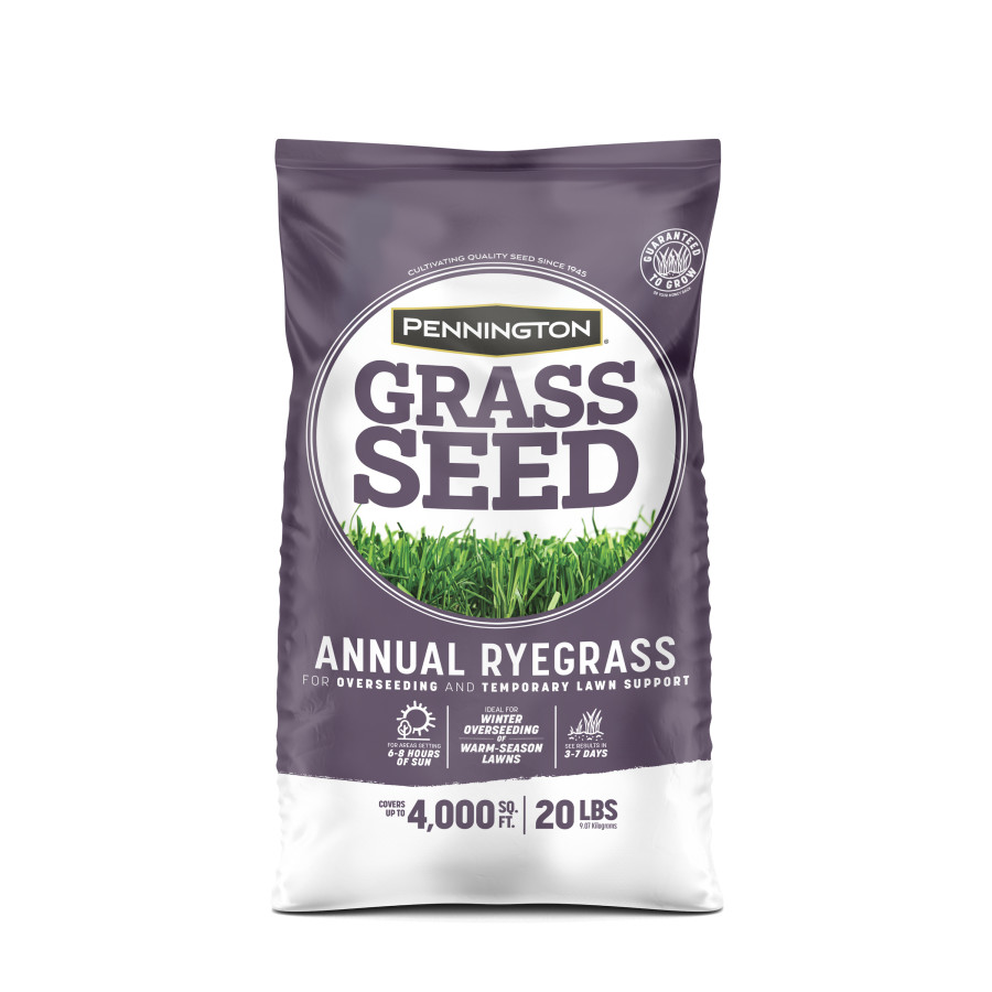 Pennington Annual Ryegrass Grass Seed 1ea/20 lb